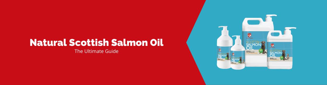 Salmon Oil for Dogs Blog Banner