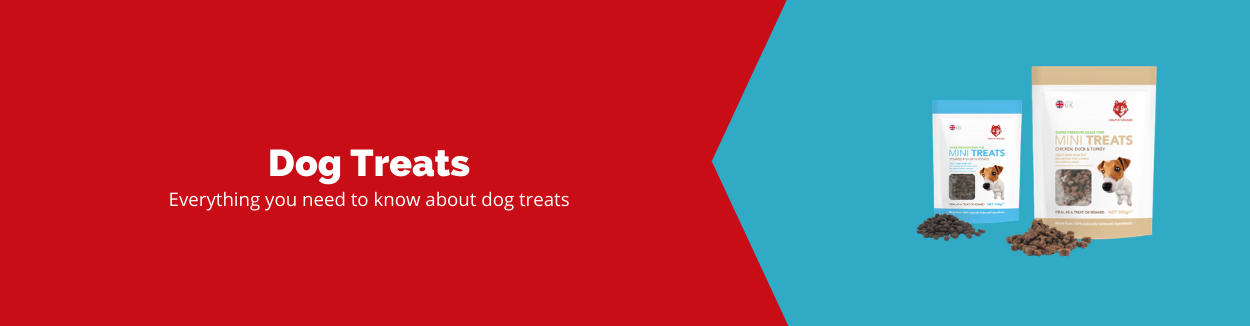 Dog Treats Guide