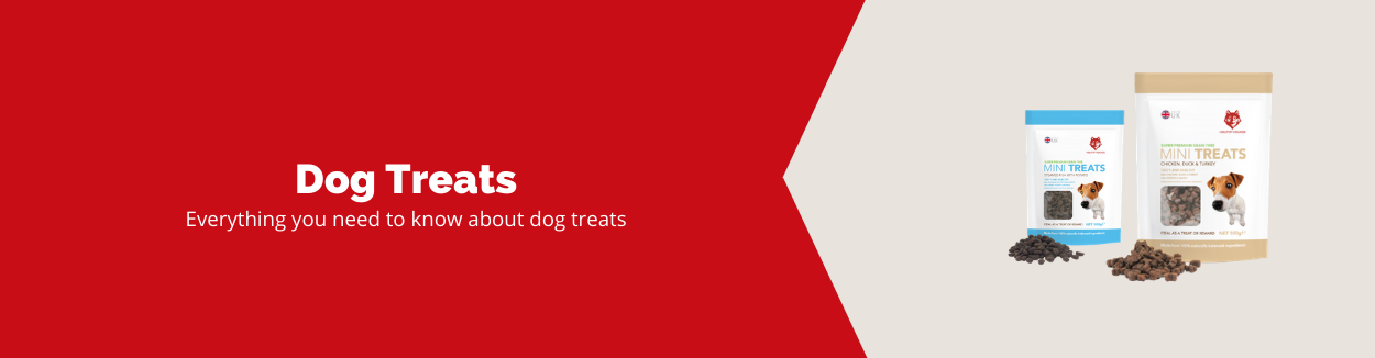 Everything you need to know about dog treats