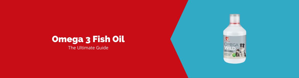 Fish Oil Blog Banner